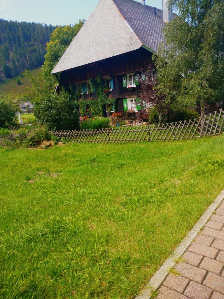 schwarzwaldhaus am wanderweg geissenpfad geniesserpfad am feldberg