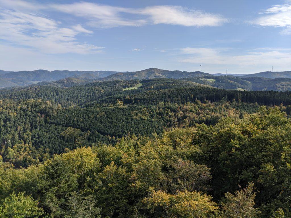 Ausblick in den Schwarzwald vom urenkopf