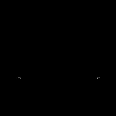 Logo vom Waldrausch Magazin aus dem schwarzwald