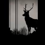 schwarzwald design hoodie - hirschsprung aus dem höllental im hochschwarzwald