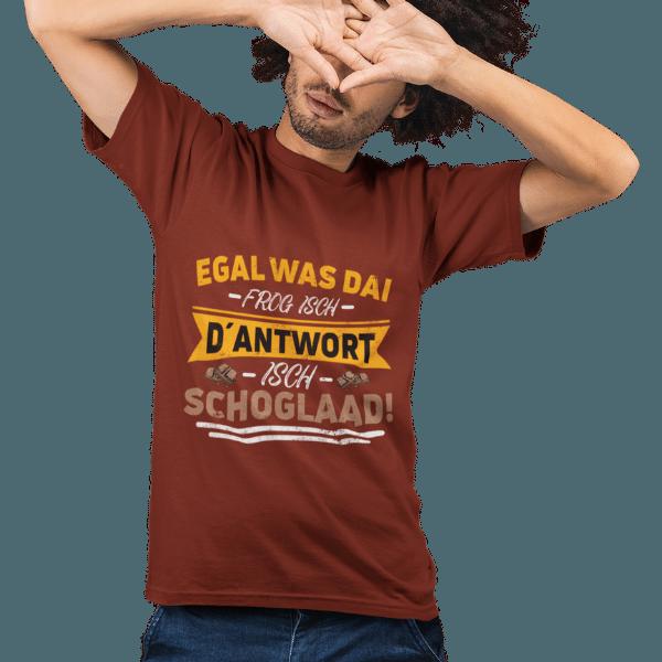 mann mit braunem t-shirt mit alemannisch badichem spruch