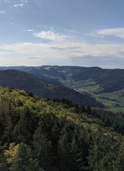 schwarzwald wanderung im kinzigtal zum urenkopf